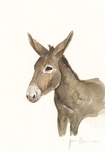 Liscannor Donkey
